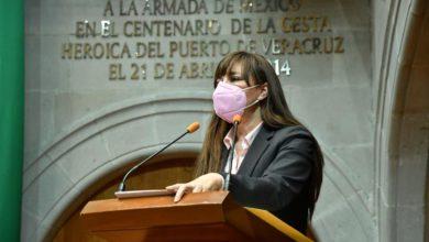 Diputada Julieta Villapando