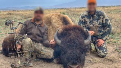 En las imágenes aparecen dos sujetos con el bisonte ya muerto. Foto: Facebook/Rancho Buena Vista.