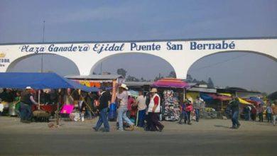 En el Estado de México hay 9 plazas ganaderas